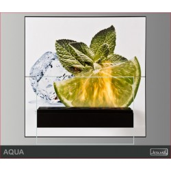 Biokominek Aqua
